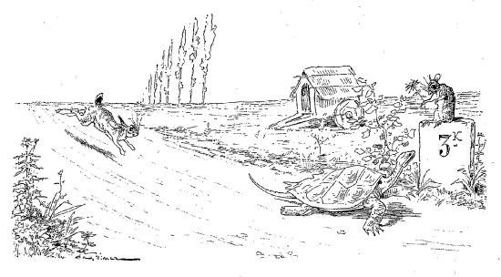 le-lievre-et-la-tortue